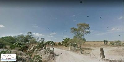 EL MILAGRO EL LLANO, Oriente, Aguascalientes, ,TERRENO,EN VENTA,1112